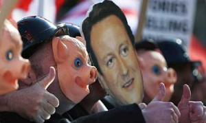 cameronpigs